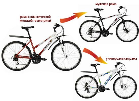 Отличие женской рамы от мужской на велосипеде