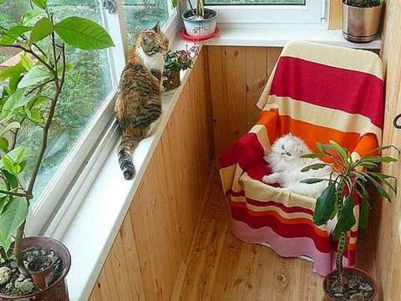Интерьер балкона в квартире с фото примерами.
