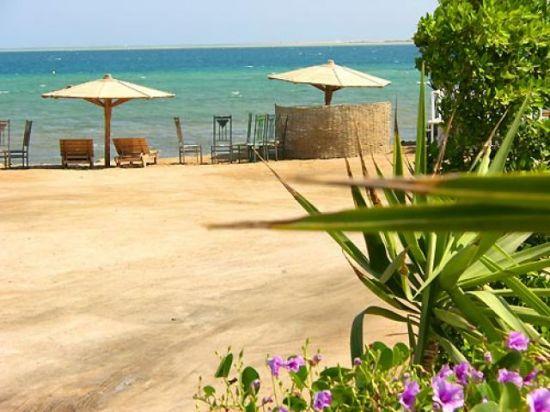 Египет Сафага