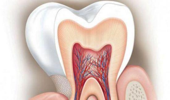 зубы реагируют на температуру