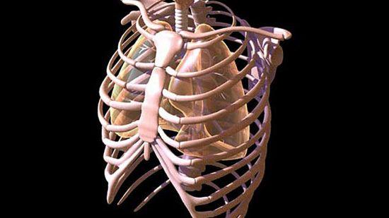 Лечение опухолей скелета грудной клетки