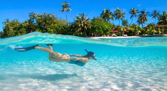 Мальдивы - отпуск вашей мечты