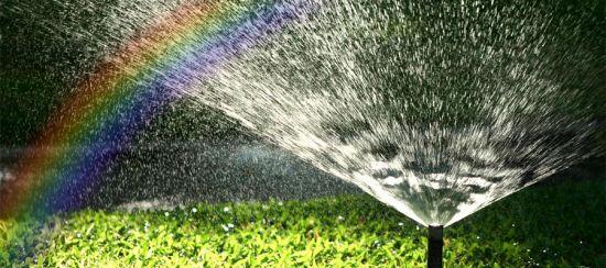 Достоинства систем автоматического полива