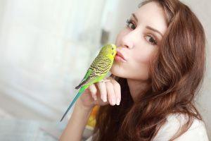 Развитие аллергии на птиц и грызунов
