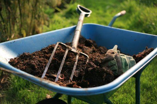 Как и когда удобрять почву