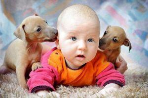 Стоит ли заводить ребенку питомца