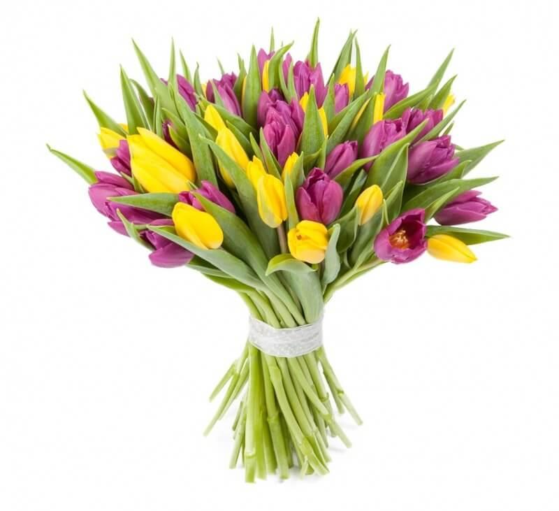 Букеты из тюльпанов с доставкой: как оформить их красиво