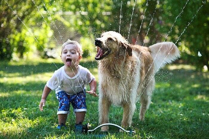 Учимся любить животных с детства